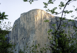 El Cap in the morning sun