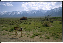 Views from Manzanar