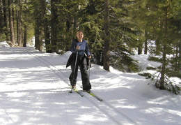 Diane Cross-country skiing