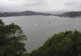 view of Tiburon from Angel Island