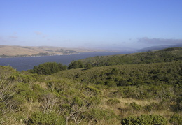 Point Reyes looking out over Tomales Bay