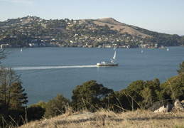Angel Island Ferry