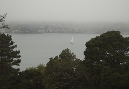 foggy morning on San Francisco Bay