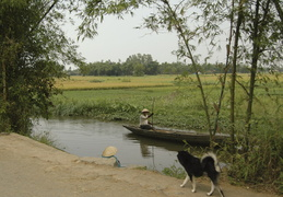 poling through the canals and rice paddies
