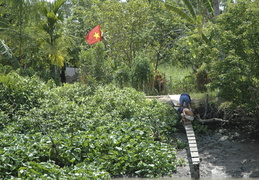 Vietnamese flag over the Meekong banks