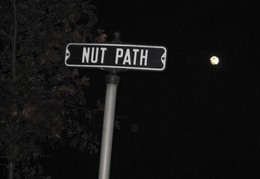 Nut Path road
