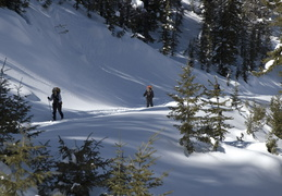 Skiing in along the fire road