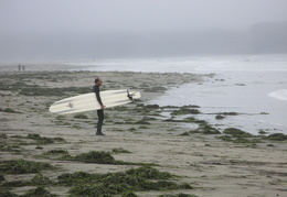 surfer on Dillon Beach
