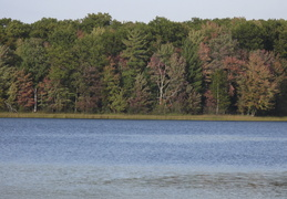 Lake in early fall