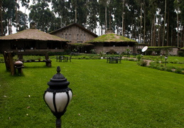 Mountain Gorillas Nest Lodge