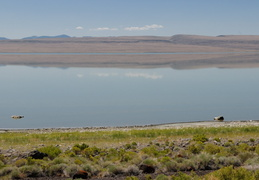 Alkali Lake