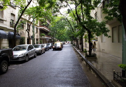tree-lined street in Recoleta district of Buenos Aires