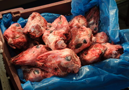 goat heads in a box