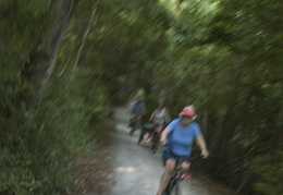 riding the bike paths of Sea Pines
