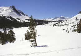 Tioga Pass scenery