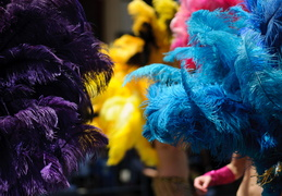 carnaval feathers